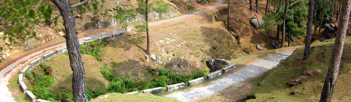 Sarna_Garden_road_Ranikhet
