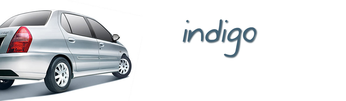 indigo-31